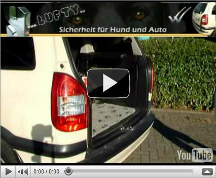 Lufty® Ein- und Ausbau am Opel Zafira